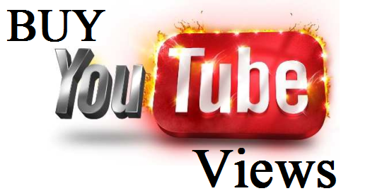 YouTube Views and Subscribers